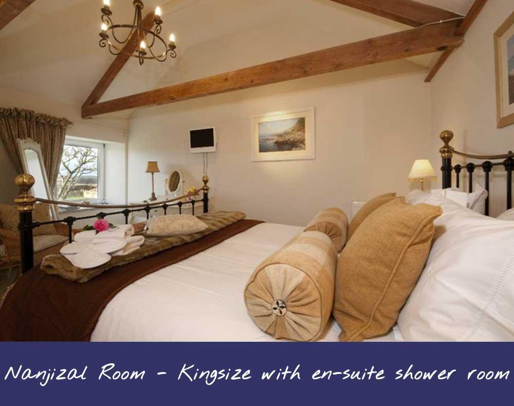 Nanjizal Bed & Breakfast Room