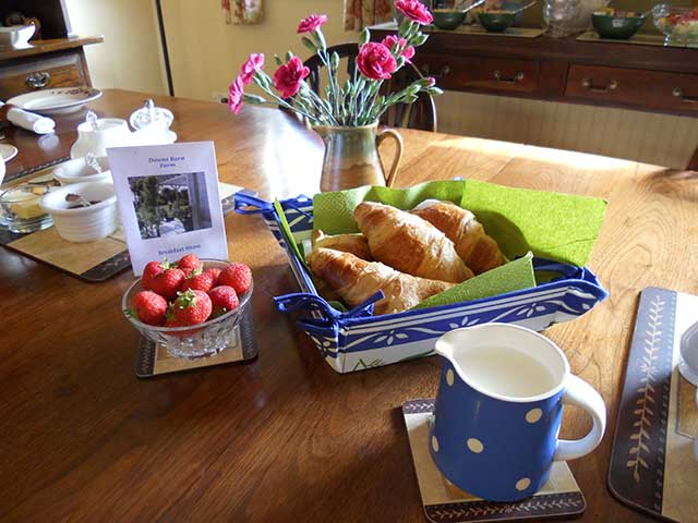 Bed and Breakfast Downs Barn Farm
